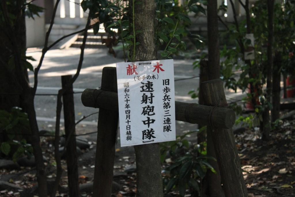 靖国神社の献木
