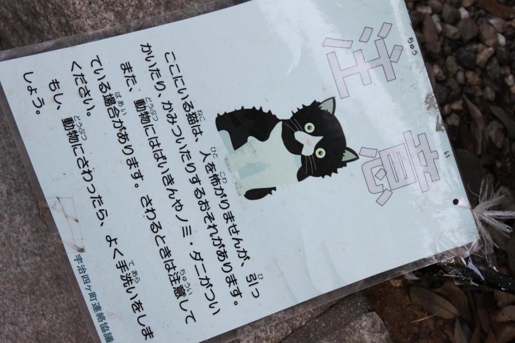 伊勢神宮内宮のネコ