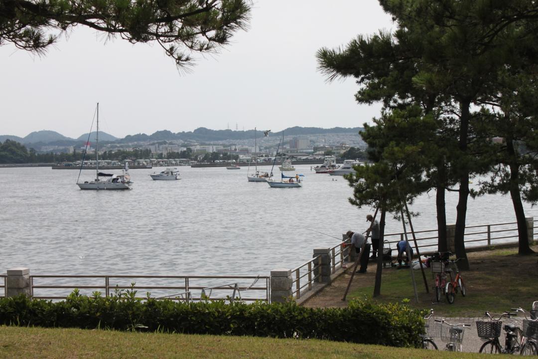 八景島から見る海