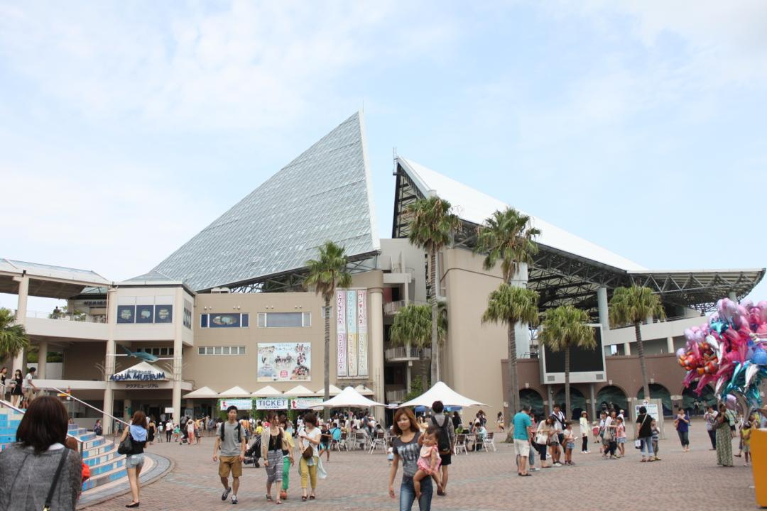 横浜八景島シーパラダイスの水族館アクアミュージアム
