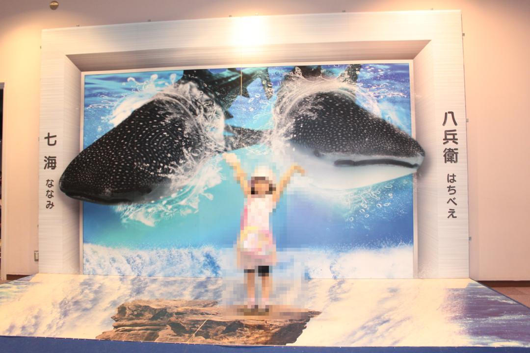 横浜八景島シーパラダイスの水族館アクアミュージアムで記念撮影