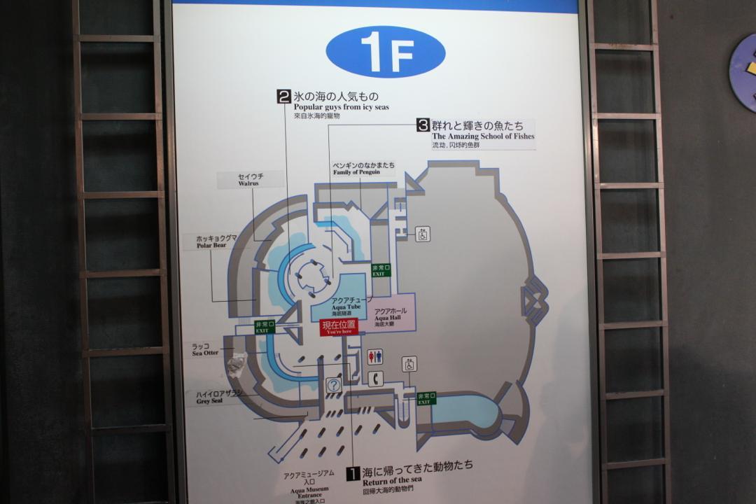 横浜八景島シーパラダイスの水族館アクアミュージアムのフロアマップ