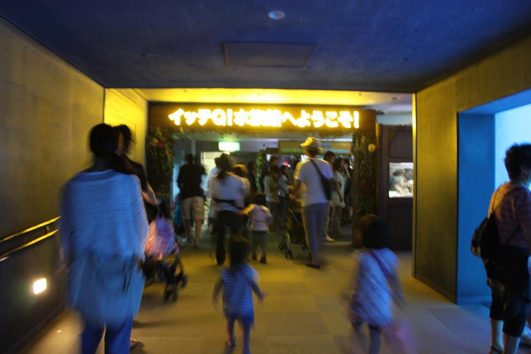 横浜八景島シーパラダイスの水族館アクアミュージアムにあるイッテQ水族館