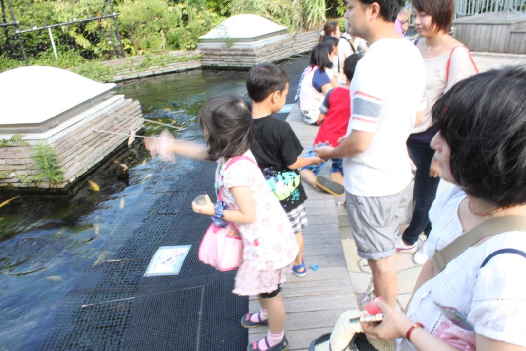 横浜八景島シーパラダイスの水族館アクアミュージアムにある屋上庭園