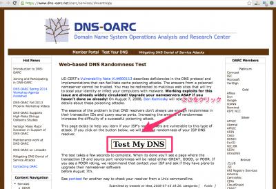 Web-based_DNS_Randomness_Test___DNS-OARC
