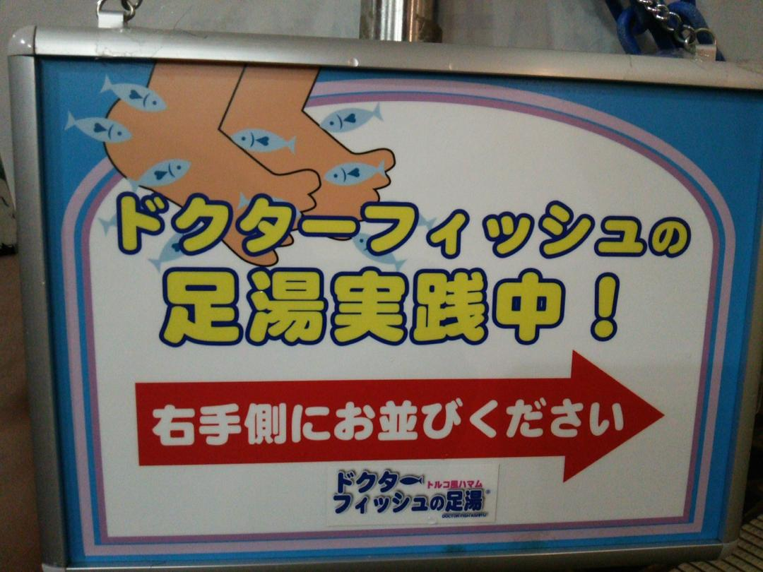 箱根ユネッサンスのドクターフィッシュ