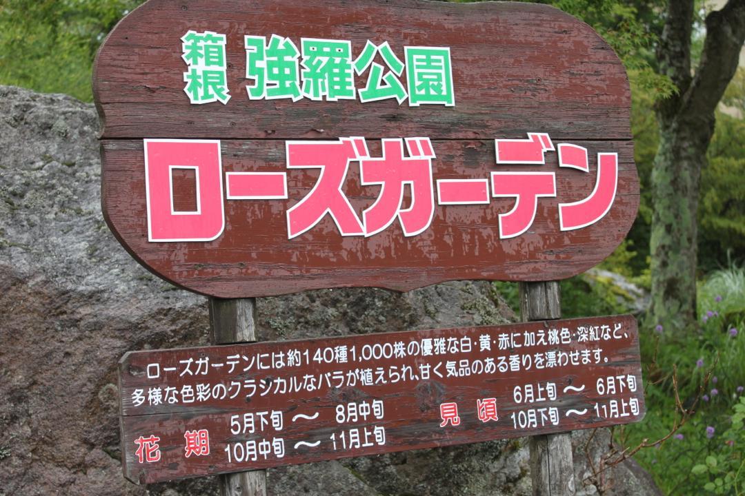 箱根強羅公園のローズガーデン