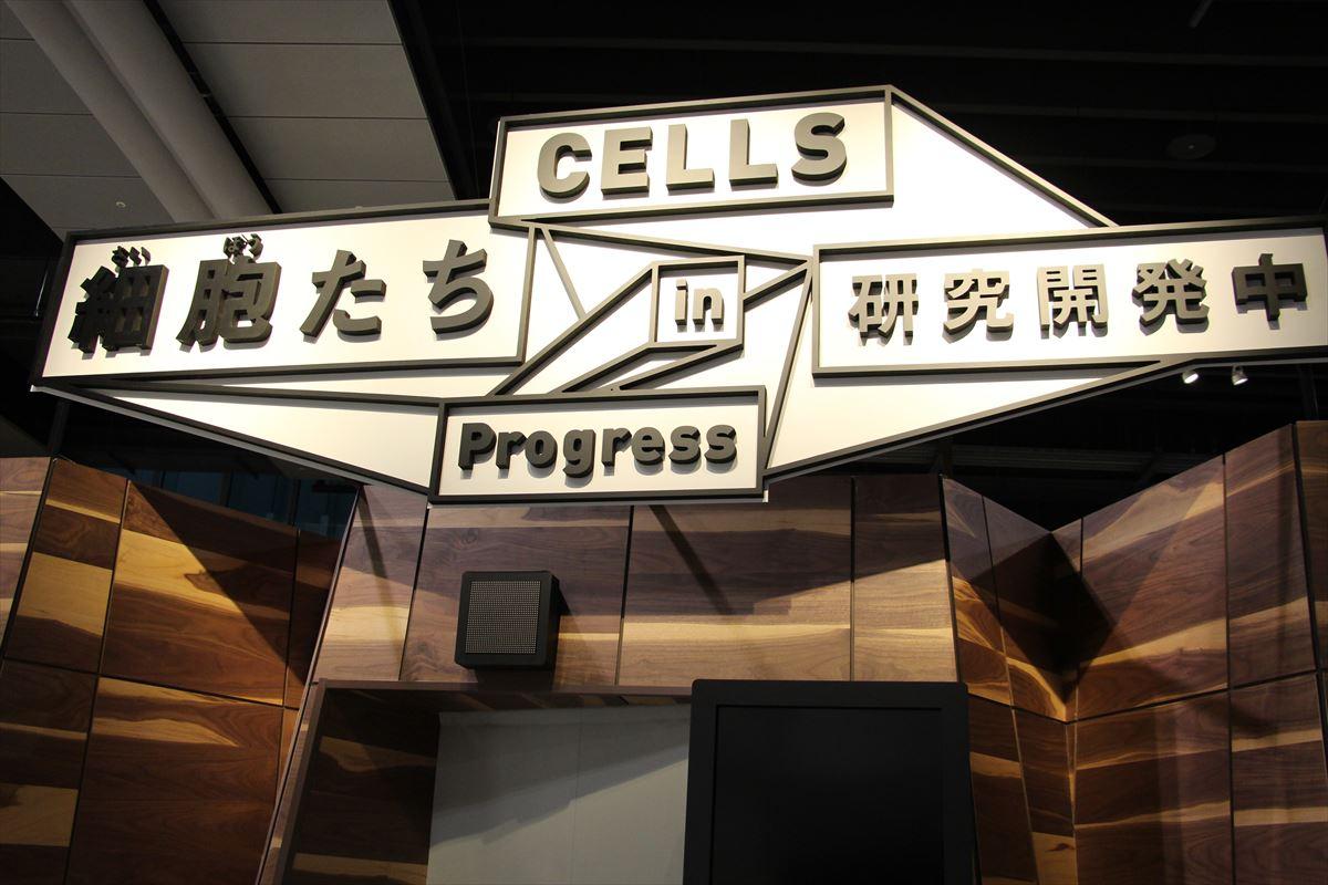 日本科学未来館の細胞たち研究開発中