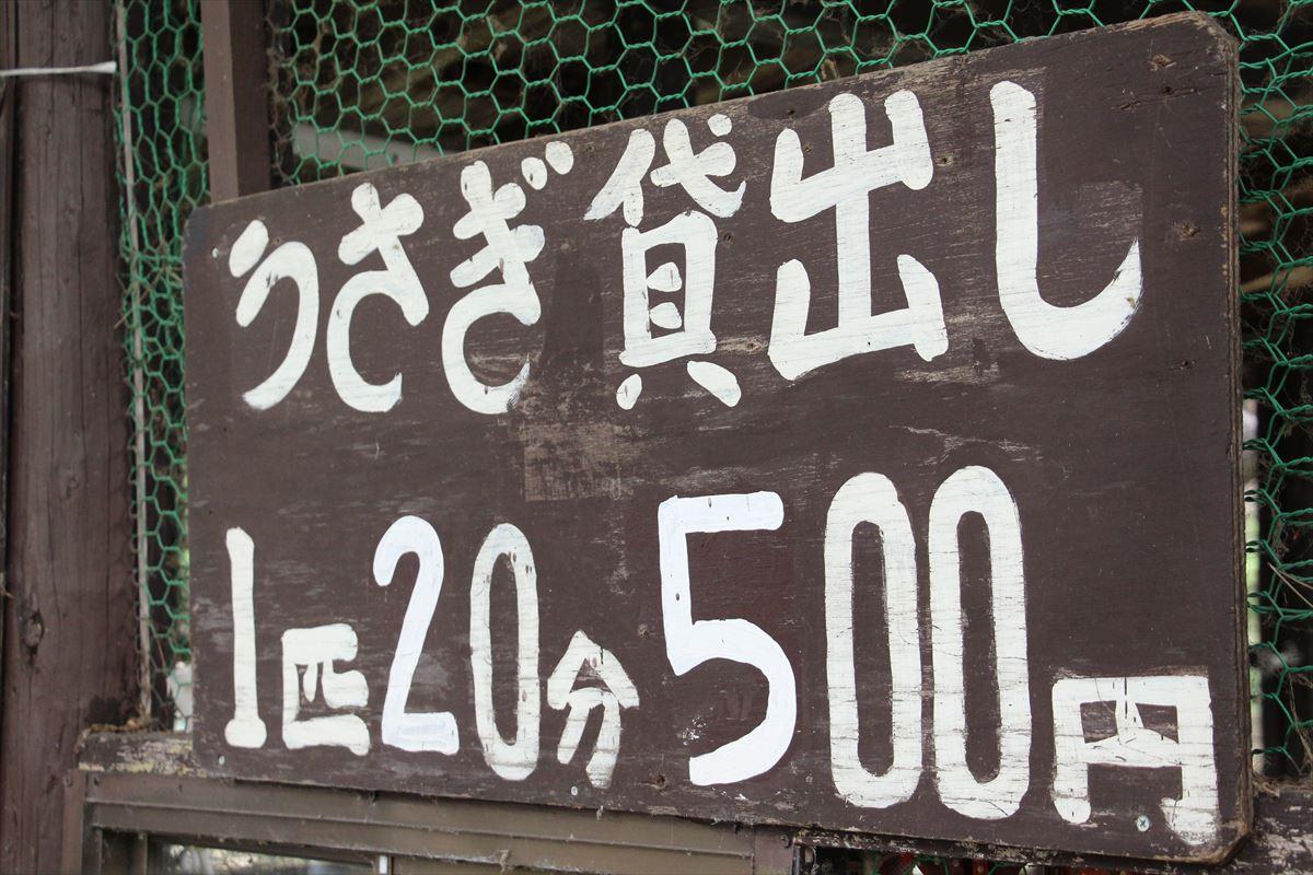 福島県の磐梯南ヶ丘牧場のウサギ貸し出し