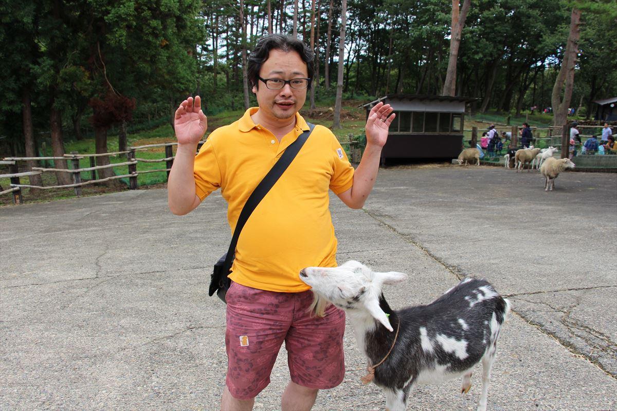 福島県の磐梯南ヶ丘牧場のふれあい広場