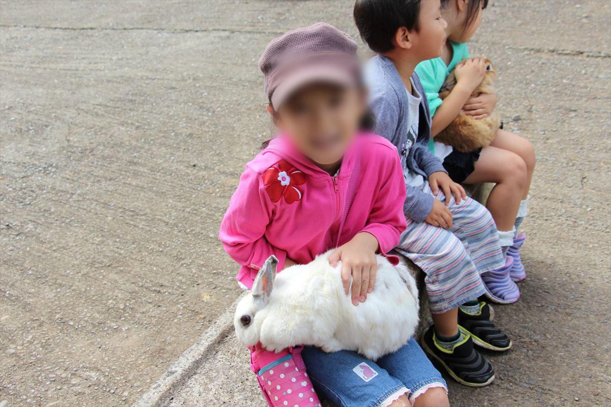 福島県の磐梯南ヶ丘牧場のウサギを抱っこ