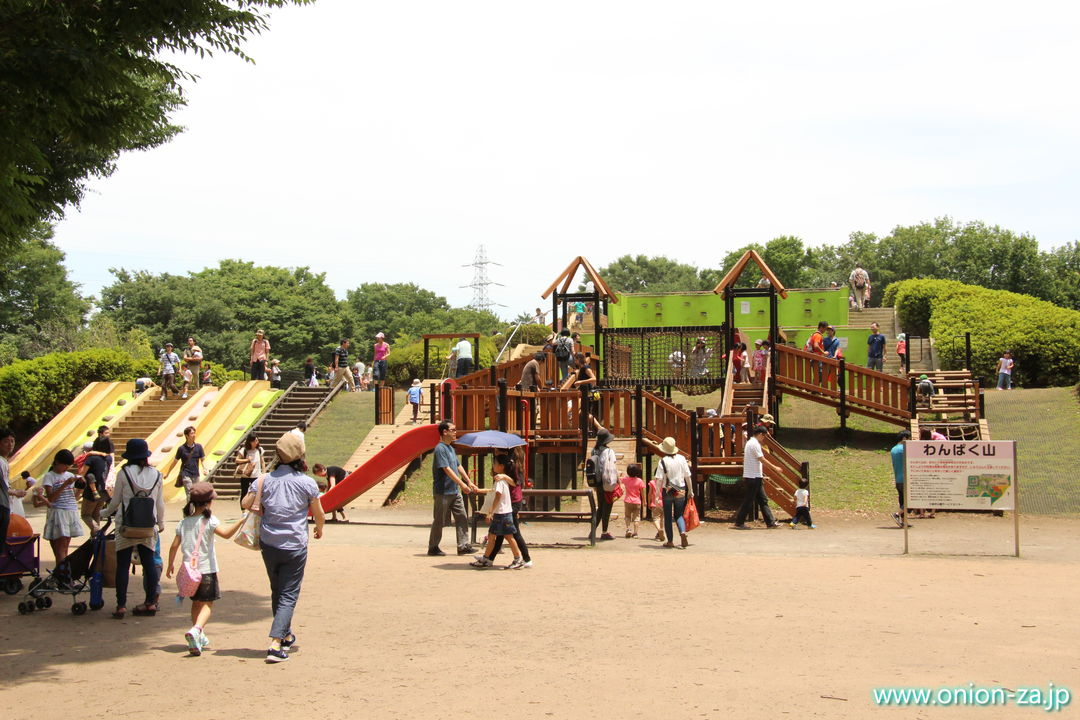 東京都立小金井公園のわんぱく山