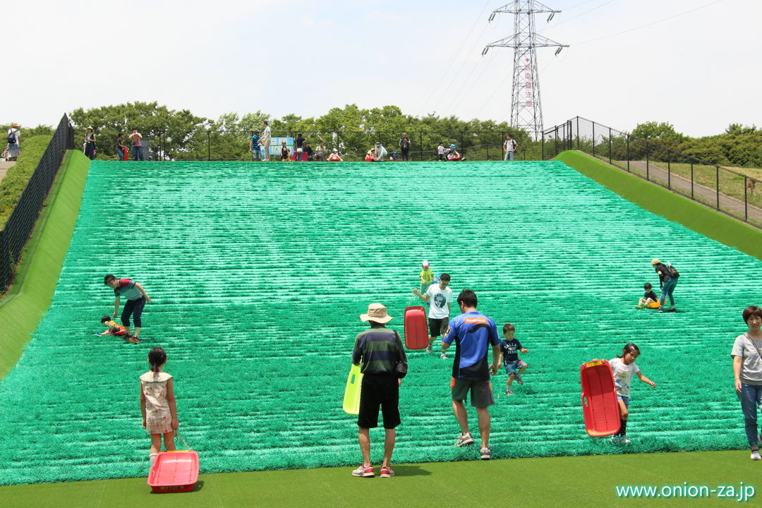 東京都立小金井公園の人工芝ソリゲレンデ