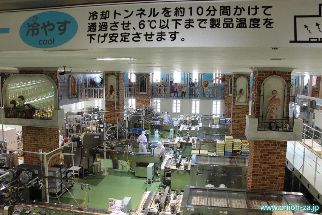 北海道にある白い恋人パークの工場見学「クッキー製造工程」4