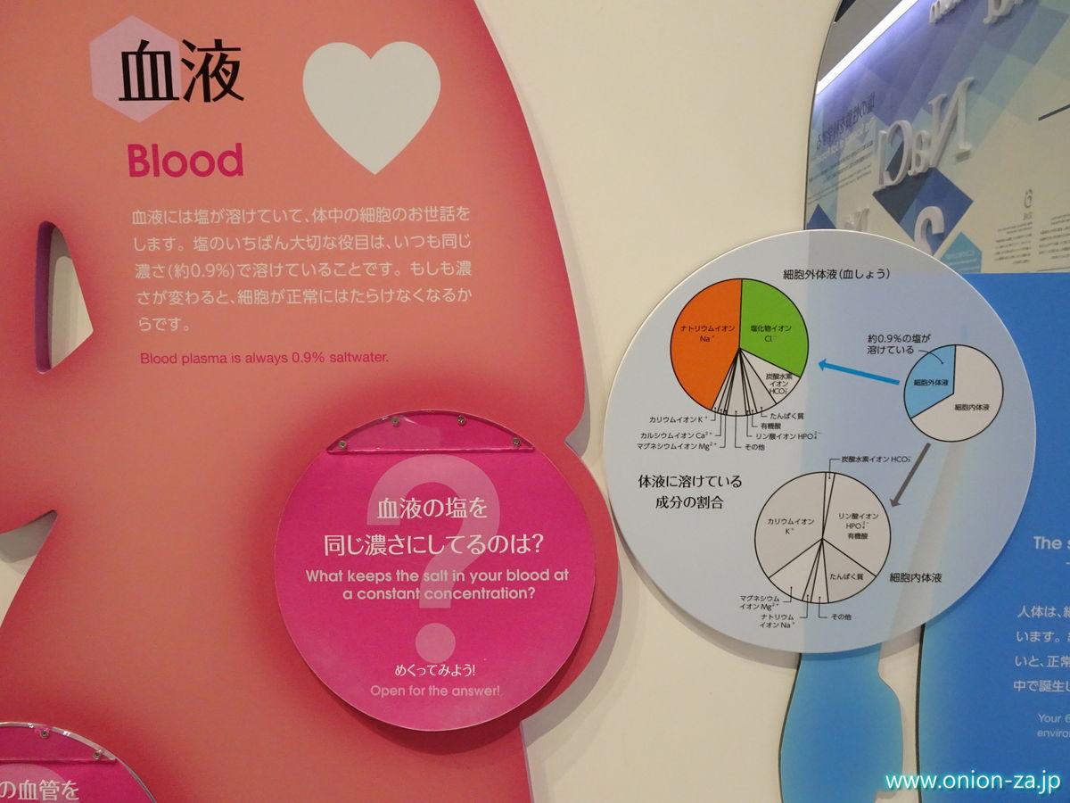 血液に含まれる塩分